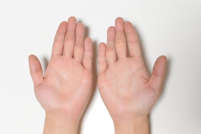 両手のひら